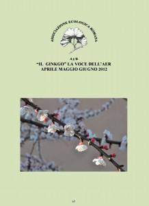 """Copertina del numero 65 de """"Il Ginkgo, la voce dell'AER"""". La rivista riporta le attività dell'associazione: gite ed escursioni, programma e relazioni sulle conferenze ed articoli di giardinaggio e botanica"""