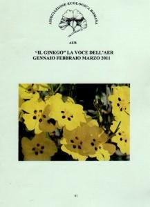 """Copertina del numero 64 de """"Il Ginkgo, la voce dell'AER"""". La rivista riporta le attività dell'associazione: gite ed escursioni, programma e relazioni sulle conferenze ed articoli di giardinaggio e botanica"""