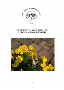 """Copertina del numero 62 de """"Il Ginkgo, la voce dell'AER"""". La rivista riporta le attività dell'associazione: gite ed escursioni, programma e relazioni sulle conferenze ed articoli di giardinaggio e botanica"""