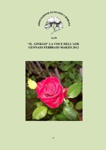 """Copertina del numero 67 de """"Il Ginkgo, la voce dell'AER"""". La rivista riporta le attività dell'associazione: gite ed escursioni, programma e relazioni sulle conferenze ed articoli di giardinaggio e botanica"""