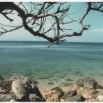 Mare d'inverno. Fotografia di P. Uberti - 2° Premio al concorso fotografico 2010, sezione paesaggi.