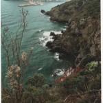 Il risveglio della natura. Fotografia di M. Uberti. Concorso fotografico 2010, sezione paesaggi.