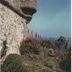 Il bastione fiorito. Fotografia di P. Uberti. Concorso fotografico 2010, sezione paesaggi.