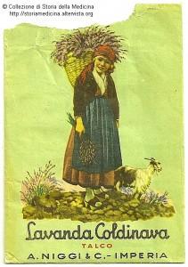 Locandina lavanda Coldinava
