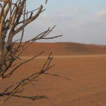 1° Premio Concorso Paesaggi 2012: