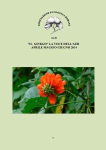 Ginkgo, la voce dell'AER. Sommario del n°71 (Aprile-Maggio-Giugno 2014)
