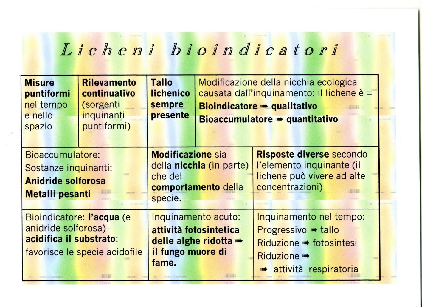 licheni bioindicatori
