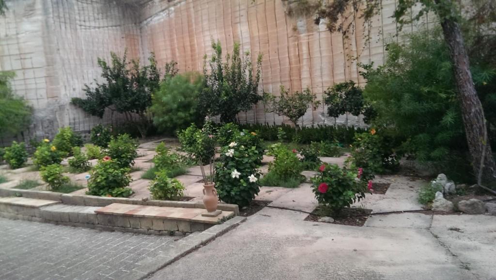 Collezione di ibiscus nei Giardini dell'Impossibile di Favignana